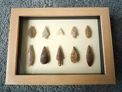 Neolithic Arrowheads in 3D Picture Frame, Authentic Artifacts 4000BC (1055)