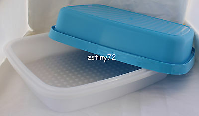 Tupperware Season Serve Large Marinader Saltwater Taffy Blue & Snow White New