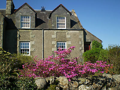 Holiday Cottage (sleeps 2) Scotland, 4 nights, dog friendly, (contact for dates)