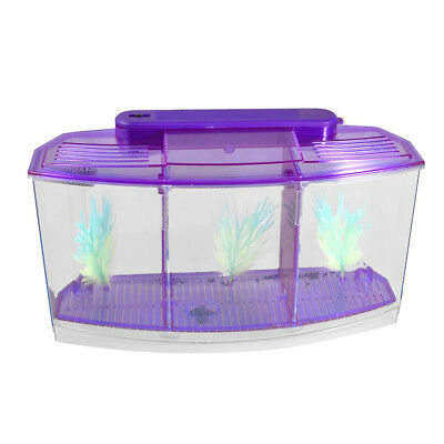 Clear Purple Plastic Battery Powered LED Lamp Mini Desktop Fish Aquarium U9V4