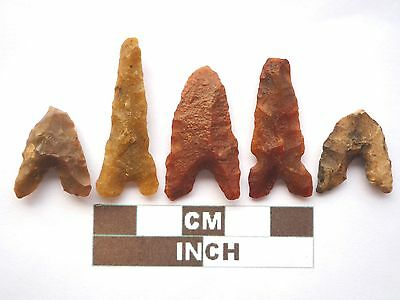 Neolithic Arrowheads x 5, Eiffel / Moroccan Points, Genuine - 4000BC  (Z036)