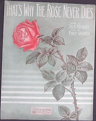 Vintage Sheet Music THAT'S WHY THE ROSE NEVER DIES 1913 J. MAHONEY Percy Wenrich