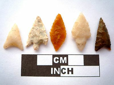 5 x High Quality Neolithic Arrowheads - 4000BC - (N052)