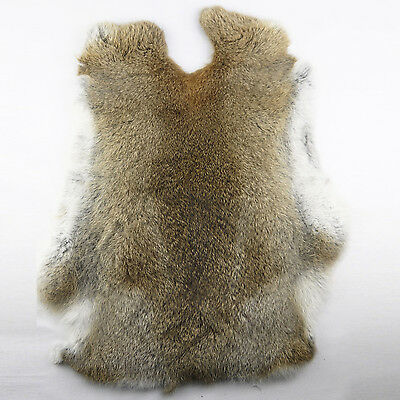 lieomo Genuine Naturally Rabbit fur skin tanned Leather Hides craft Gray Pelts