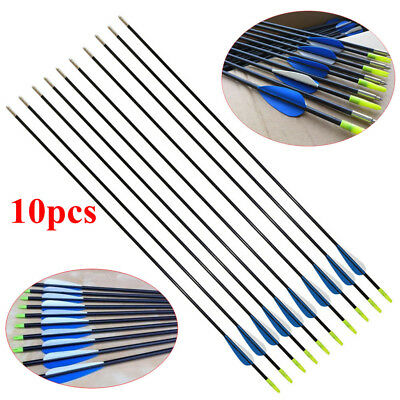 "10X 31"" Heavy Duty Fiberglass Arrows Compound & Recurve Bow Hunting Archery EL"
