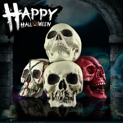 Homo Sapien Human Head Bone Color Skull Plastic Mischienous Halloween Skeleton