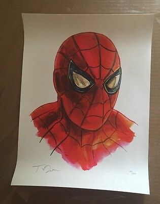 Tim Doyle Spider-Man Shiny Objects Signed / Numbered 179 of 200 12 x 16 Inch