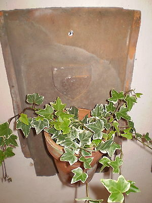 Gorgeous Vintage Large French Clay Tile Garden Courtyard Wall Planter