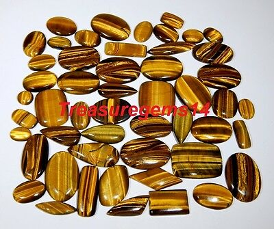 250 Ct Wholesale Lot Top Natural Golden Fire Tiger Eye Mix Cabochon Hot Gemstone