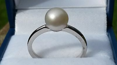 Natural Japanese Akoya pearl ring in platinum over 925