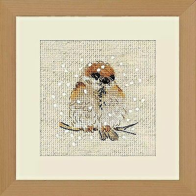 Counted Cross Stitch Kit RIOLIS - Sparrow