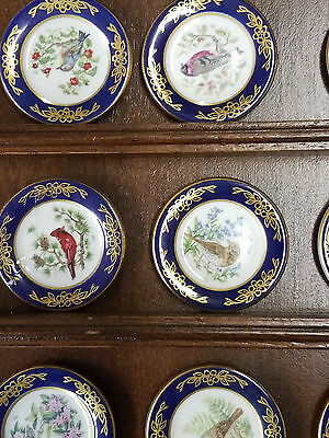 Franklin Mint Porcelain Miniature Bird Plates Limited Edition 1993 21 Plates and