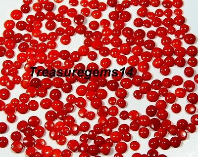 50Ct Wholesale Lot 100% Natural Italian Red Blood Coral Round Cabochon Gemstones