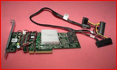 Dell PowerEdge 8-port 6GB/s PCIe x8 SAS SATA RAID Controller PERC H310 0HV52W