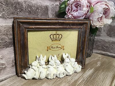 Baby Rabbits Sleeping 6x4 Picture Frame