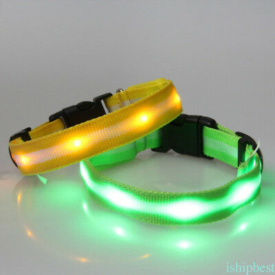Dog Collar with 4 Modes Safety Flashing LED Light Safety Dog Pet Collar Tag