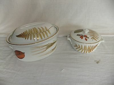 C4 Porcelain Royal  Worcester Wild Harvest Oven To Table Ware 6F1A