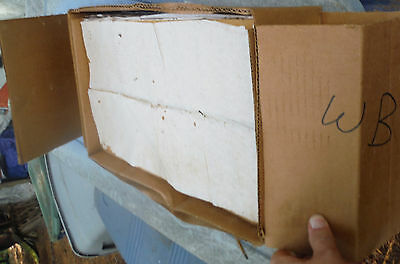 Walter T Kelley?  NOS Honey Bee Wax Foundation Sheets - 5 Pound box