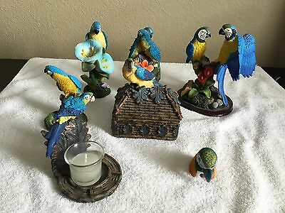 Blue & Gold Macaw Figurine Collection