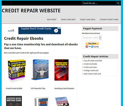 300k plr articles 2000 ebooks 650 niches free shipping all credit repair ebook membership website for sale fandeluxe Images