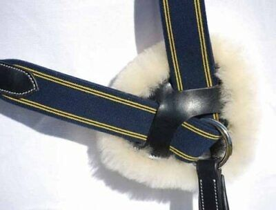 Champion 5 Point Breastplate