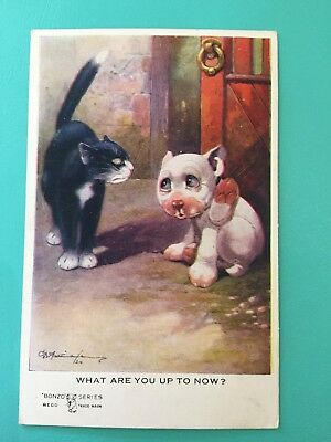 Vintage 1920s Bonzo Novelty Postcard G Studdy What Are You Up To Now ? Cat & Dog