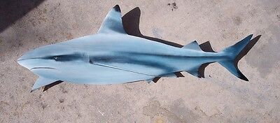 Blacktip Reef Shark Carved painted large Palm Tree Frond nautical art sharks