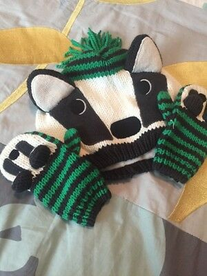 Gymboree 2-3t Beanie And Gloves
