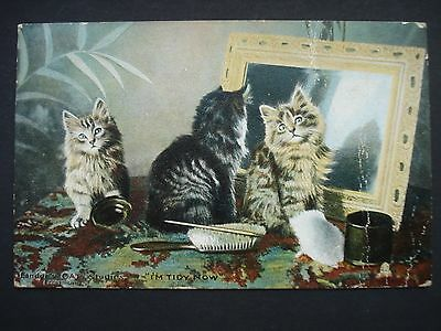 Charming Used Colour Post Card Photochrome Cat Studies