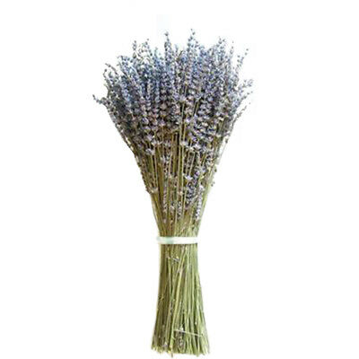 Dried Bouquets Natural Dried Flower DIY Living Room Decoration Flowers 1 Bunch M