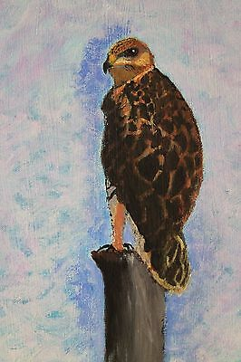 The Hawk, 9-Inch by 12-Inch Hand Painted Acrylic Painting on Canvas