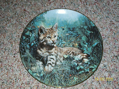 """Nature's Lovables """"bobcat:natures Dawn"""" Collector Plate, From 1991, #1067B"""