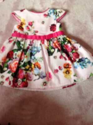 Baby Girls Ted Baker Dress 3 To 6 Months