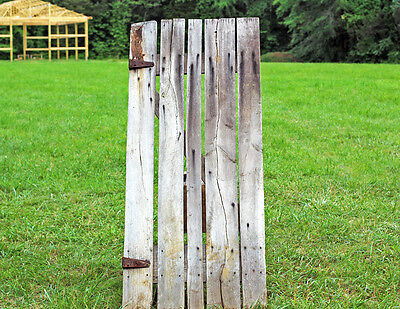 Early-1900's Tennessee Pole Barn Door
