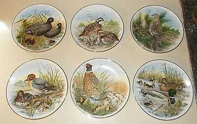 Set of 6 Game Birds of the South Collectors Plates Southern Living Gallery 1882