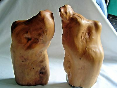 """Cypress Knee Bookends Pair App. 10"""" Tall"""
