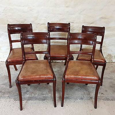 C19th Regency Set of 5 Leather & Mahogany Saber Leg Dining Chairs (Antique)