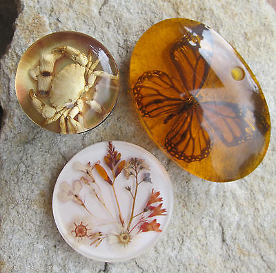 Vintage 60's/70s Embedded Butterfly Resin Paperweight / Coaster / Gear Knob Lot