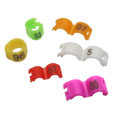 2.7/3/4/4.5/5 mm Birds Leg Clips Canary Pigeon Rings Bands With No.1-100 Plastic