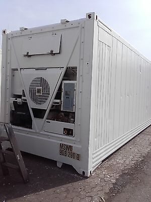 40'HC Reefer Kühlcontainer ThermoKing  B.J 2007 Neulackiert!!!!!