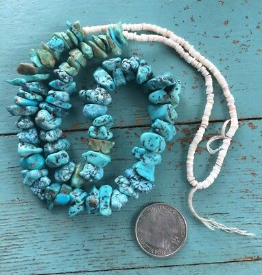 """SALE Old Authentic Native American Strung Turquoise Shell Heishi Necklace 23"""""""