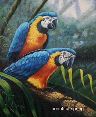 """Art Animals Portraits oil painting: A pair of lovely Parrot 24x36"""""""