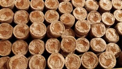 100x Jiffy-7C 35mm COIR pellets for plant propagation cuttings and seedlings