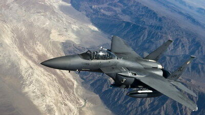 """006 F-15 - American Eagle Fighter 42""""x24"""" Poster"""