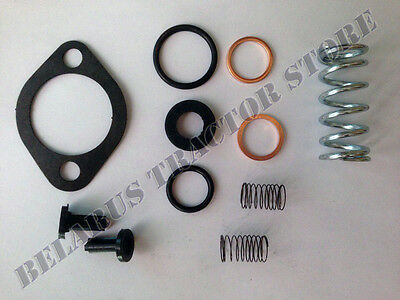 Belarus tractor Repair kit pump fuel  250/250as/400/420AN/425/300/310/T25/T40