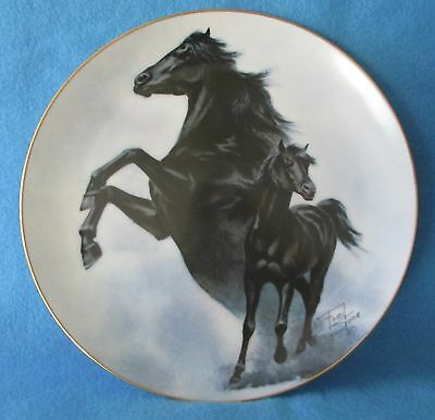 The Black Stallion Collectible Plate by Fred Stone