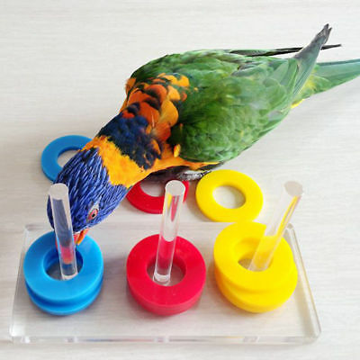 New Pet Bird Parrot Puzzle Training Interactive Intellectual Development Toys