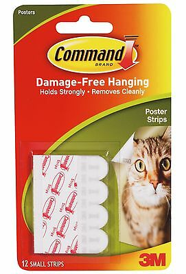 3M COMMAND Poster Small Adhesive Strips 17024 | Damage Free Poster Wall Hanging