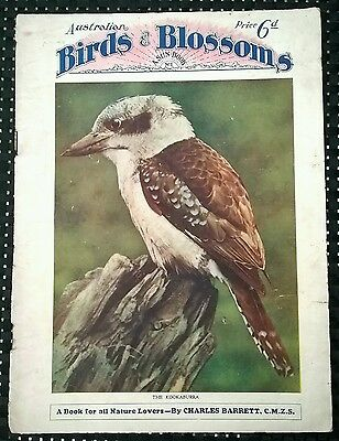 AUSTRALIAN BIRDS & BLOSSOMS-A SUN-NEWS PICTORIAL byCHARLES BARRETT SUN NATURE #1