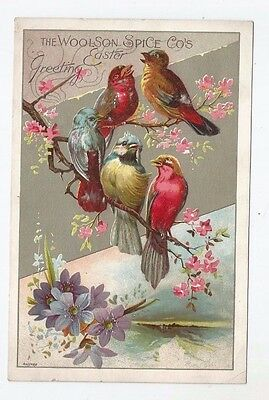 Vtg Trade Card Lion Coffee Woolson Spice Co Toledo OH Birds Flowers